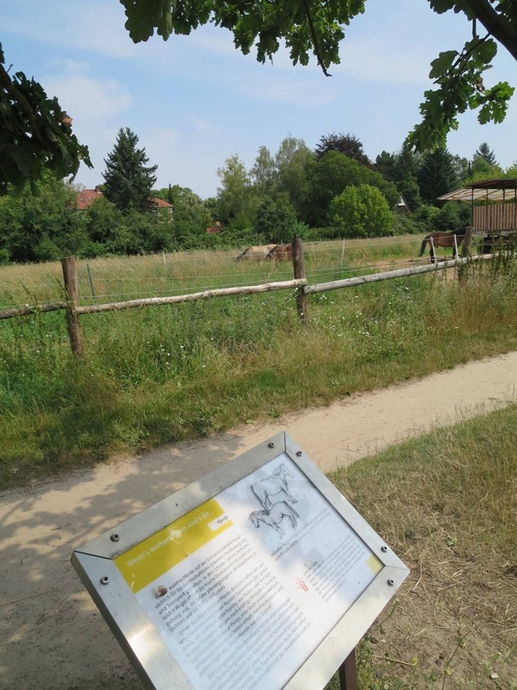 Horses and sign at Domäne Dahlem, Berlin